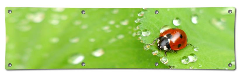 Nachhaltige Alternativen für PVC-Banner