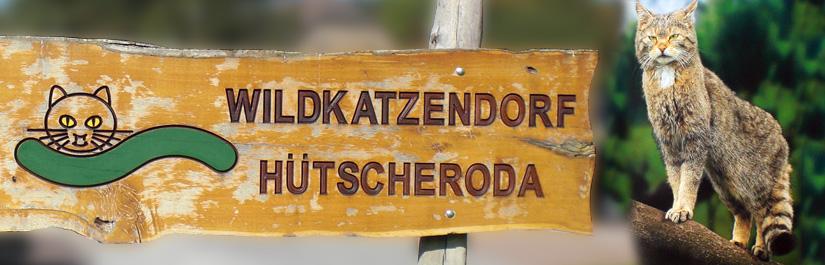 Besuch bei den Wildkatzen im Thüringer Nationalpark